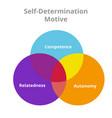 self determination motive competence autonomy