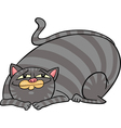 tabby fat cat cartoon vector image vector image