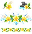 frangipani set vector image vector image