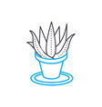 Growing of houseplants linear icon concept