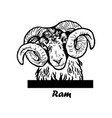 peeking funny ram - funny ram out - face vector image vector image