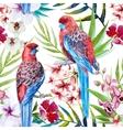 Rosella bird pattern vector image vector image