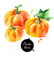 watercolor hand drawn sketch happy thankgiving vector image