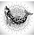 black and white dolphin on pattern circle vector image vector image