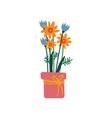 bouquet of spring flowers in flowerpot vector image vector image