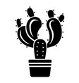 cactus in pot icon simple style vector image vector image