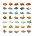 cartoon colorful stones set vector image