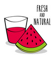 fresh and natural watermelon fruit and juice vector image