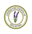 lavender essential oil label aromatic plant vector image vector image
