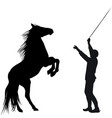 man training horse to rear up vector image vector image