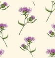 pattern drawn wild cornflowers vector image vector image