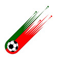 soccer ball with the flag of portugal vector image vector image