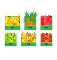 fruit and vegetables store food containers vector image vector image