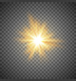 gold star or flash vector image