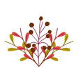 nature foliage leaves and berries isolated icon vector image vector image