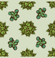 seamless pattern with hand drawn colored succulent vector image