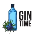 Blue glass gin bottle and juniper berries poster vector image