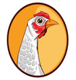 chicken icon template cartoon vector image