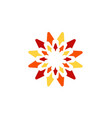 sun flower logo symbol icon design vector image