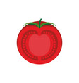 tomato slice isolated red juicy vegetables on vector image vector image