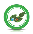 Eco green leaf icon vector image