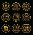 golden anniversary labels with retro vintage vector image