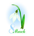 spring background with snowdrop flower vector image vector image