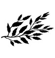 tree branch with leaves sketch vector image vector image