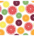 with citrus oranges lemons vector image vector image