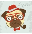 Pug hipster smoking pipe vector image