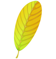 An elliptic leaf vector image vector image