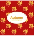 Autumn red background with leaves and berries vector image vector image