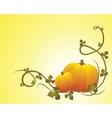 halloween pumpkin vegetables vector image vector image
