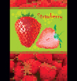 strawberry menu vector image vector image