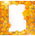 autumn maple leaves template with white paper card vector image vector image