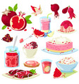 Pomegranate fresh fruity food dessert ice vector image