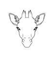 sketch of giraffes head portrait of forest animal vector image