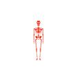 Anatomy Icon vector image