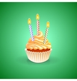 Birthday greeting card with cupcake vector image