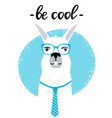 business llama with glasses and tie be cool hand vector image