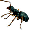 cartoon ant worker vector image vector image