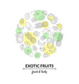 exotic fruits banner template tasty and healthy vector image