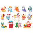 winter owl cute christmas birds owls in scarf vector image vector image