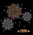 Abstract Festive Firework with Golden and Silver vector image vector image