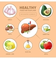 Healthy foods for liver Medical health vector image vector image
