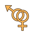 male and female couple sex symbol vector image