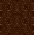 abstract geometric pattern with lines on brown vector image vector image