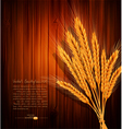 background with gold ears of wheat vector image vector image