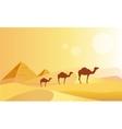 Camel Caravan And Pyramides vector image vector image