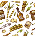 cane sugar seamless pattern sugarcane plants vector image